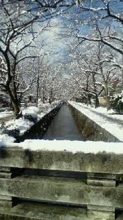 あ〜、降ったる雪かな…